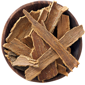 responsive-web-design-topspice-00061-cinnamon-sticks